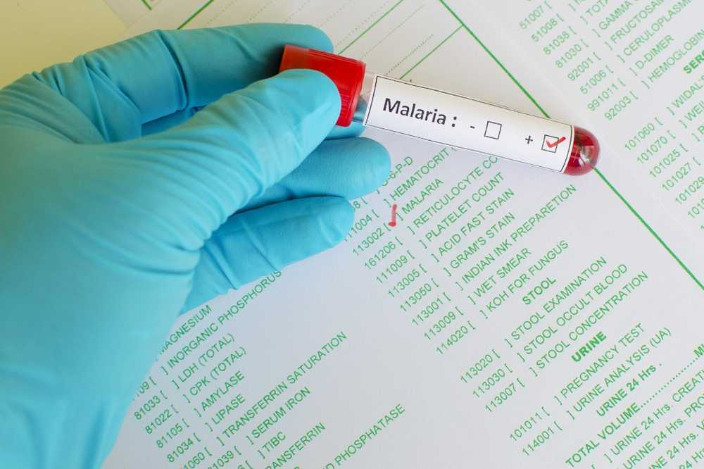 Two medications can prevent the transmission of malaria / Health News